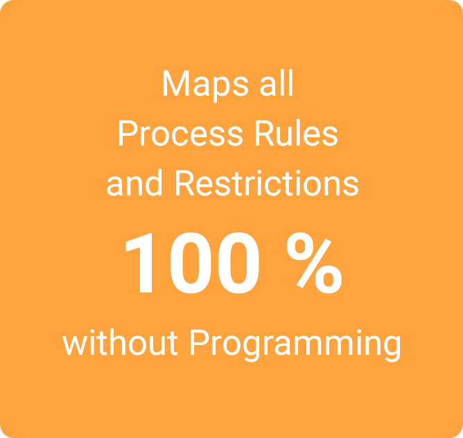 Maps all Process Rules and Restrictions 100 % without Programming